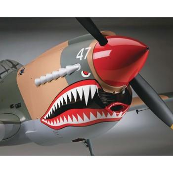Giant P-40Warhawk ARF